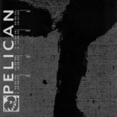 Pelican - Untitled