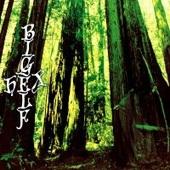 Bigelf - Hex