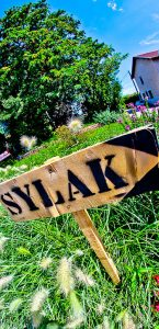 sylak2014-2
